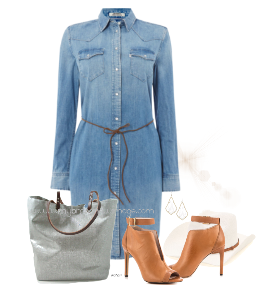 Denim Dress -  www.mybrandnewimage.com